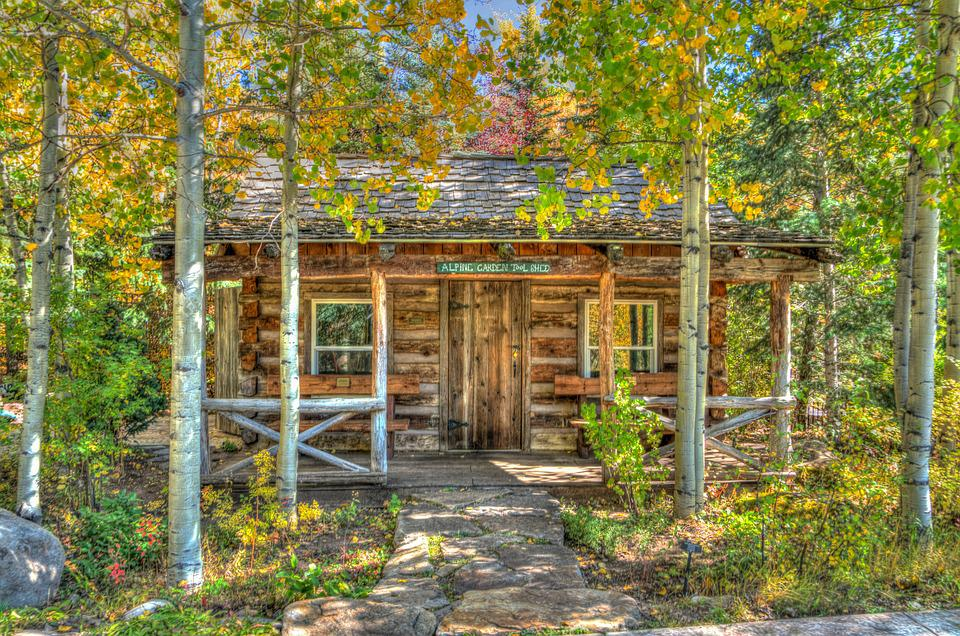 Vail, Colorado, Foliage, Log, Cabin, Landscape, Usa