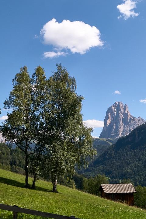 Sassolungo, Val Gardena, Trees, Barn, Landscape