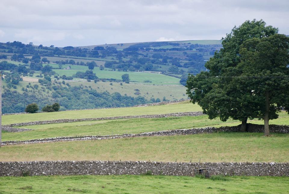 Peaks, Valley, Landscape