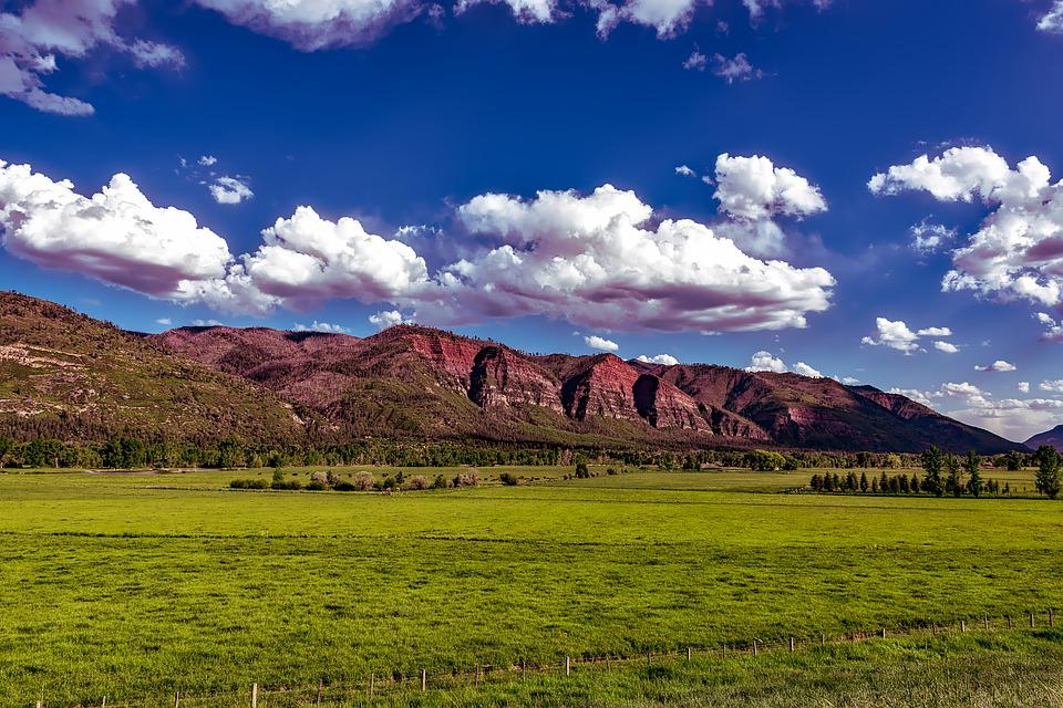 Colorado, Mountains, Valley, Meadow, Pastoral, Cattle