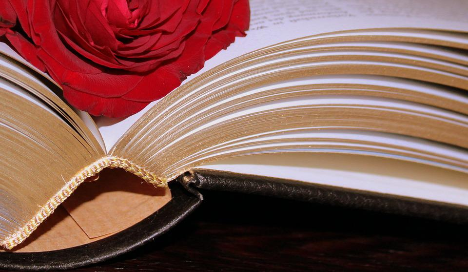 Book, Bound, Gold Edge, Valuable, Pages, Book Pages