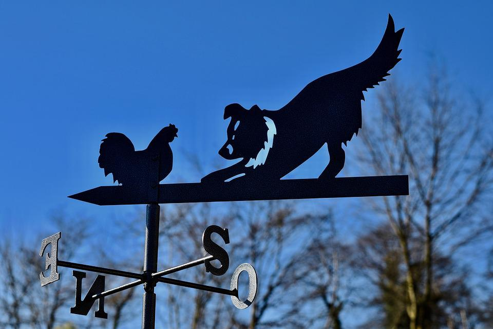 Weather Vane, Vane Forged Metal