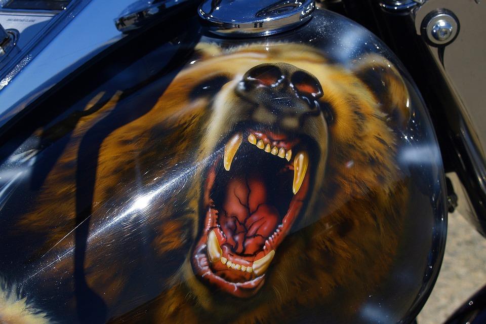 Bear, Paintwork, Motorbike, Motorcycle, Varnishing