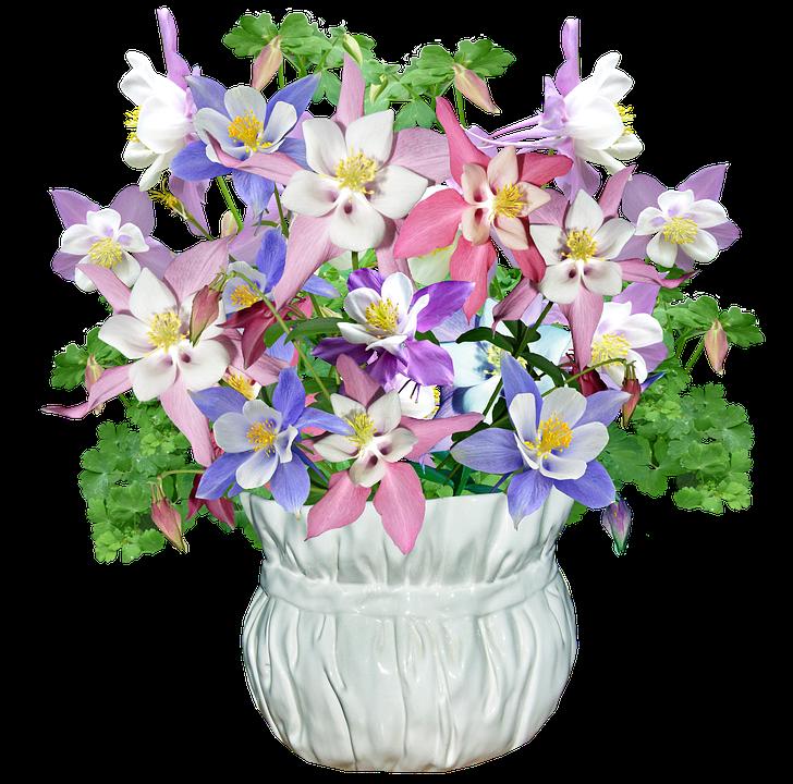 free photo vase arrangement flowers spring   max pixel