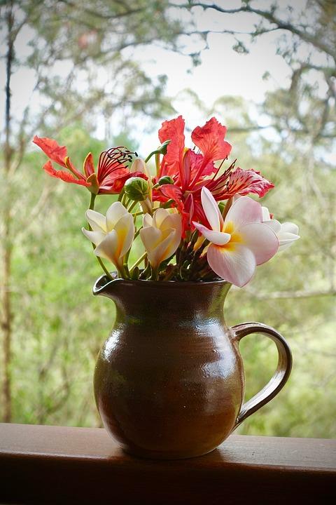 Flower, Pot, Nature, Vase, Flora, Color, Floral