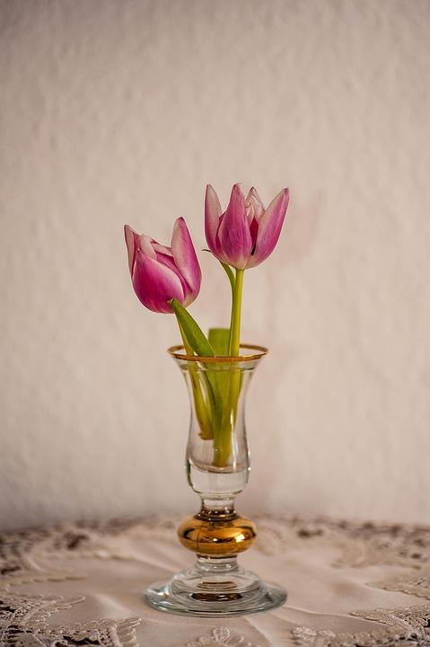 Flower, Vase, Still Life, Tulips, Blossom