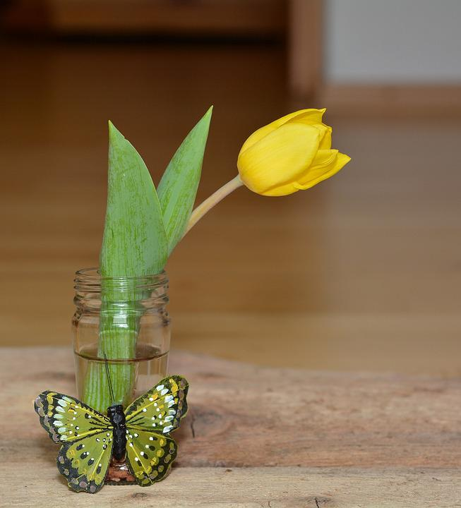 Flower, Tulip, Vase, Yellow Flower, Blossom, Bloom