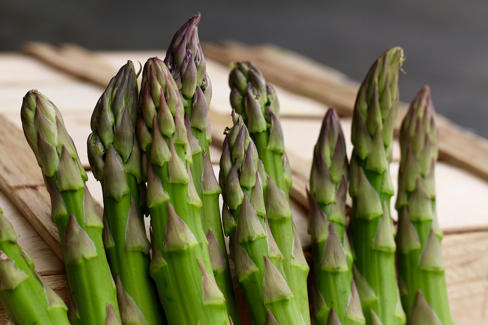 Asparagus, Green, Veg, Fresh, Healthy, Vegetarian