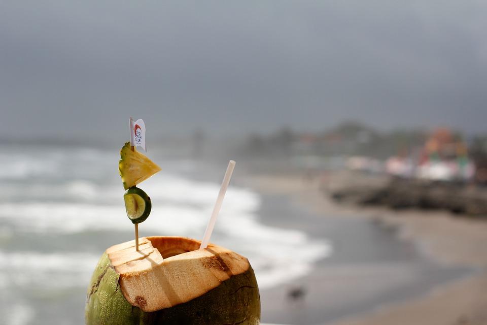 Coconut, Drink, Healthy, Fresh, Young, Vegan, Water