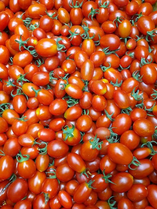 Food, Tomato, Vegetable, Grow, Fruit