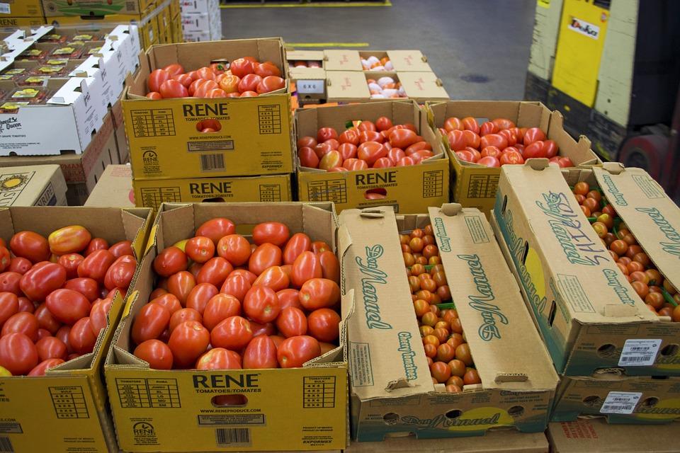 Produce, Fresh, Organic, Vegetable, Red, Tomato, Raw