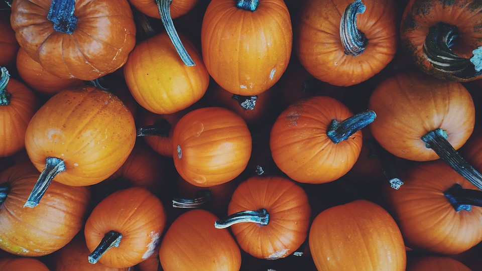 Squash, Vegetable, Pumpkin