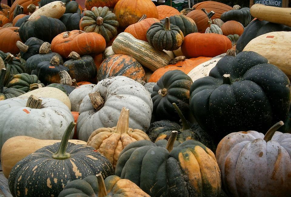 Pumpkin, Autumn, Vegetables, Gourd, Orange, Halloween