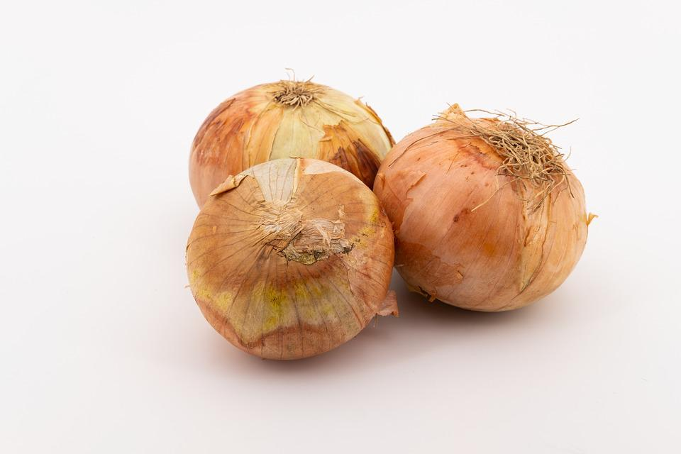 Onion, Vegetable Onion, Vegetables, Onions, Bolle