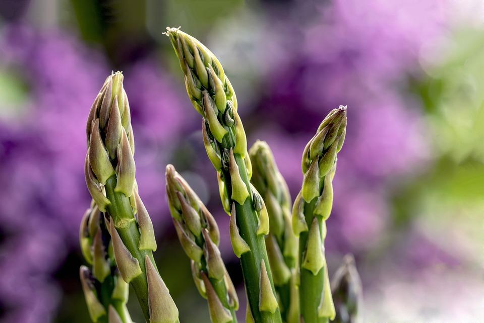 Green Asparagus, Asparagus, Green, Vegetables, Eat