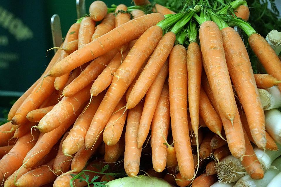 Carrot, Carrots, Vegetables, Federal Government