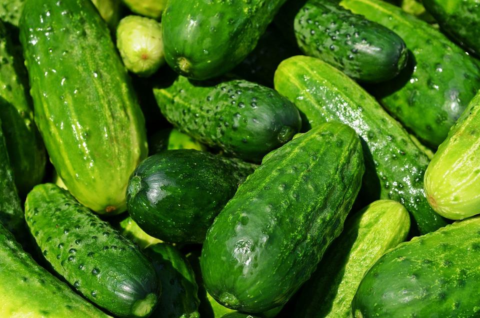 Cucumbers, Vegetables, Green, Healthy, Fresh, Eating