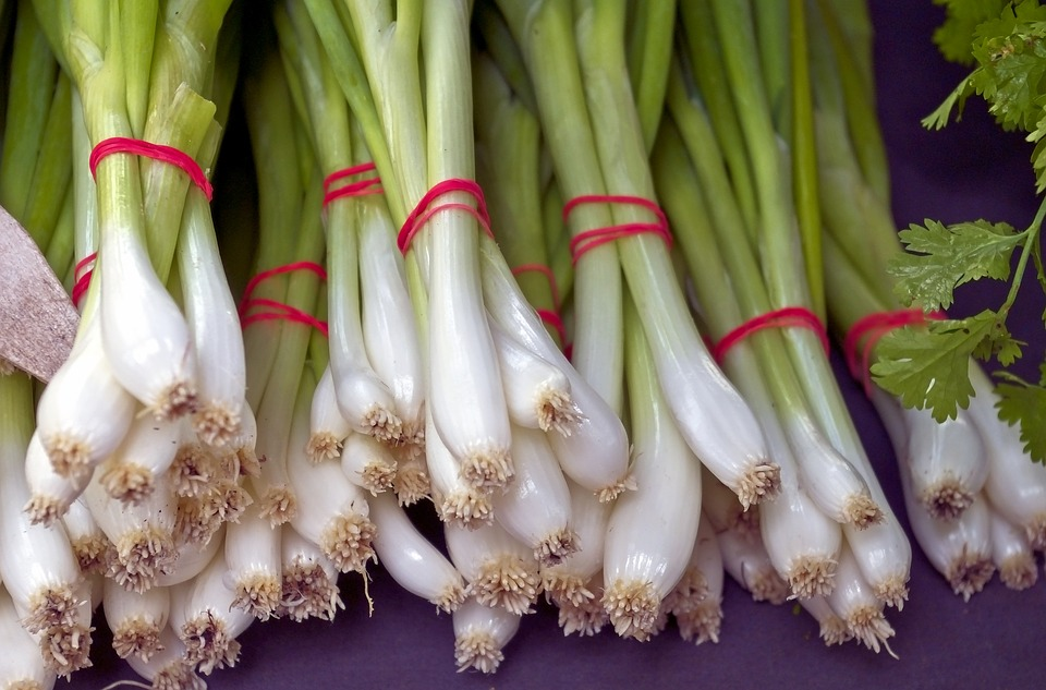Fresh Green Onion Bunches, Vegetables, Food, Harvest
