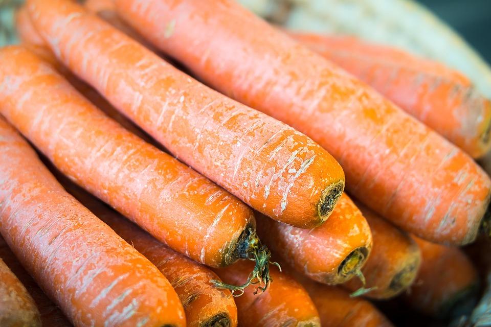 Carrots, Vegetables, Thanksgiving, Harvest, Orange