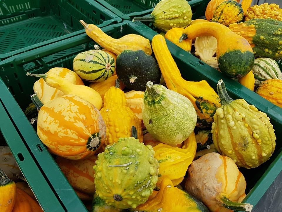 Pumpkin, Vegetables, Autumn, Halloween, Harvest