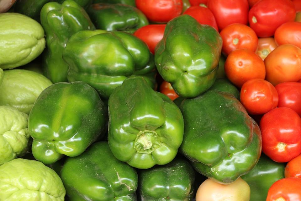 Vegetables, Pepper, Tomato, Chayote, Recife, Pernambuco