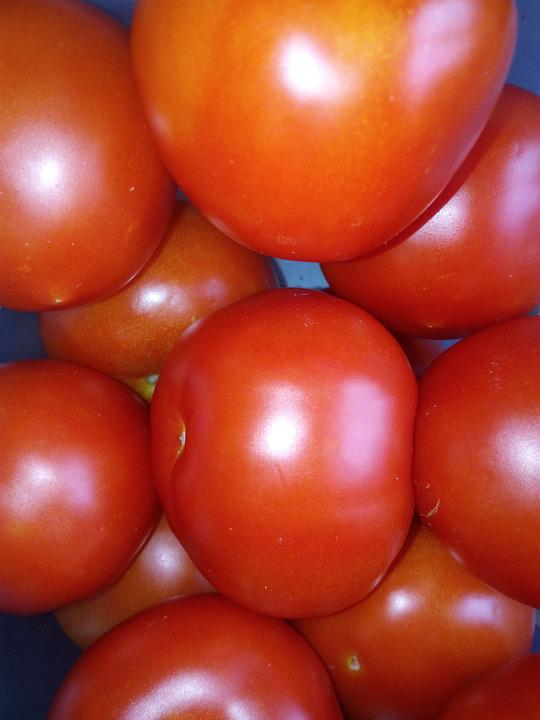 Tomatoes, Vegetables, Vegetable
