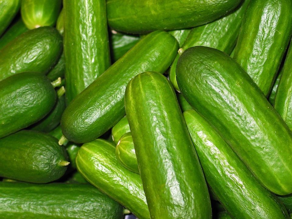 Cucumbers, Vegetables, Cucumber, Vegetarian, Green