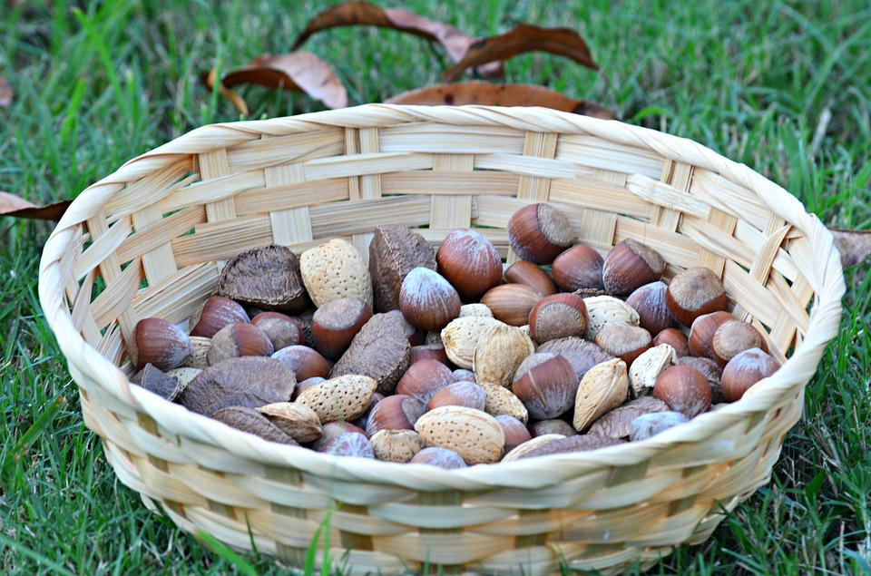 Nuts, Food, Healthy, Organic, Eating, Vegetarian, Seed