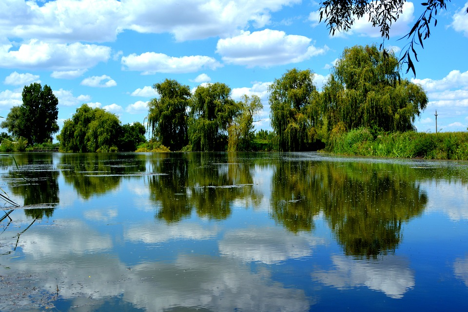Sky, Water, Cloud, Lake, Reflection, Nature, Vegetation