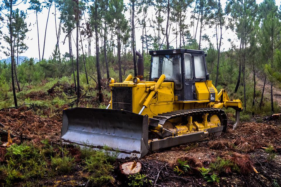 Woodland, Digger, Trees, Forest, Machinery, Vehicle