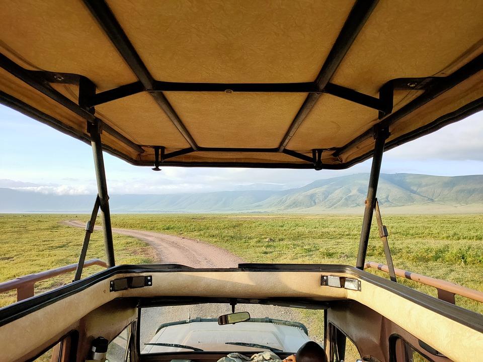 Safari, Vehicle, Road, Ride, Wilderness, Nature