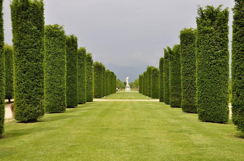 Villa, Park, Venaria Reale, Architecture, Castle