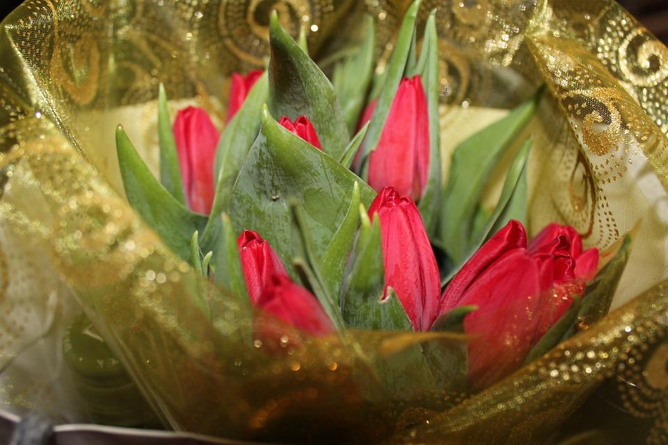 Tulip, Vibe, Good Luck