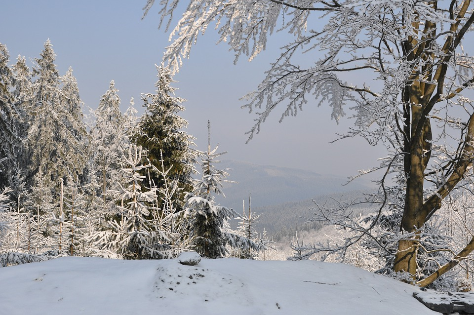 Winter, Snow, Mountains, Tree, Landscape, View