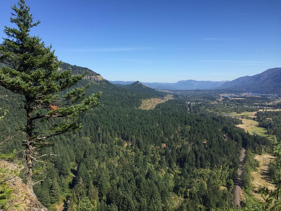 Washington, Oregon, Scenic, View Point, Landscape