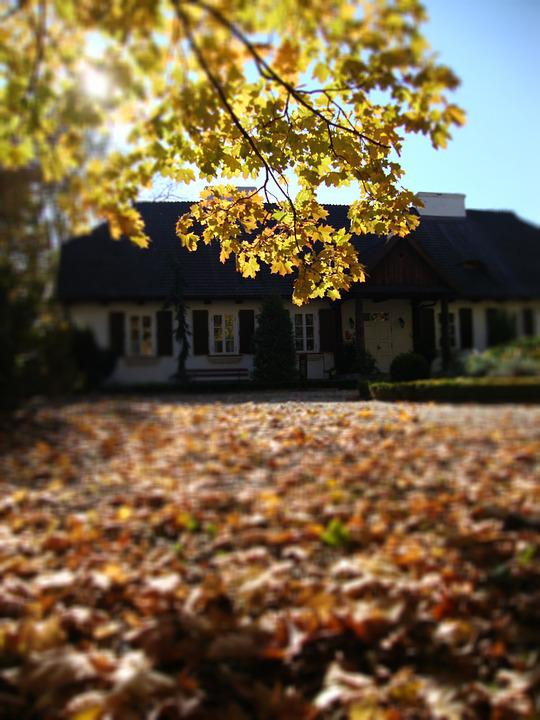 Sierpc, Poland, Manor, Building, Tree, Autumn, View