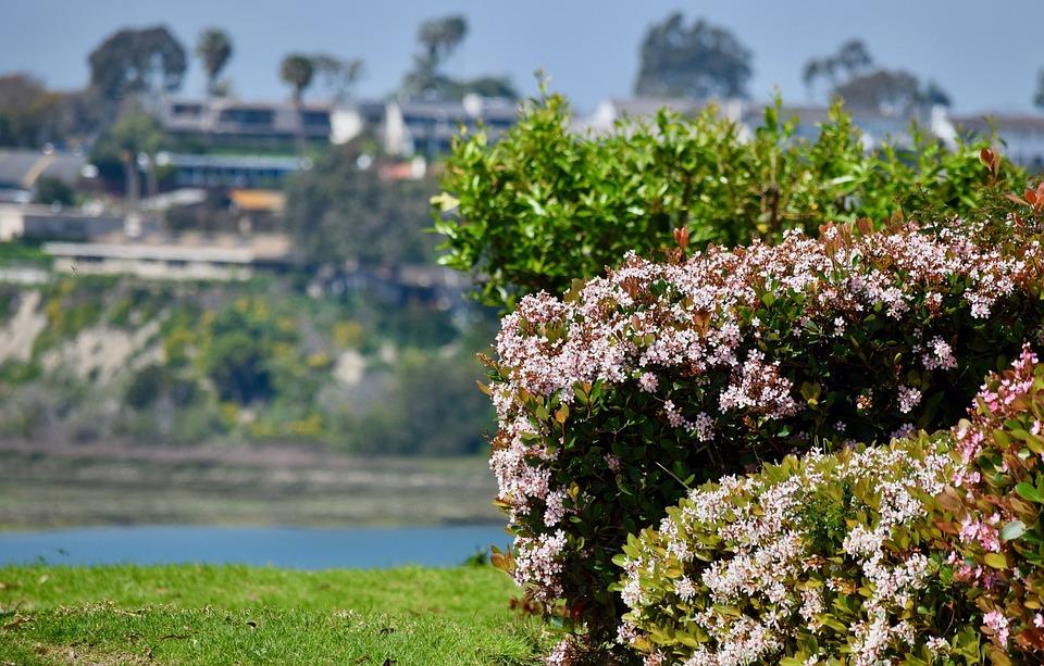 View, Water, California, Orange County, Eastbluff