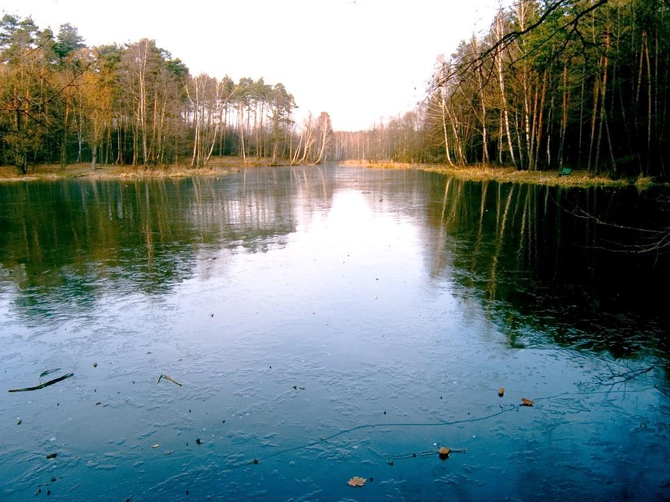Pond, View, Water, Frozen