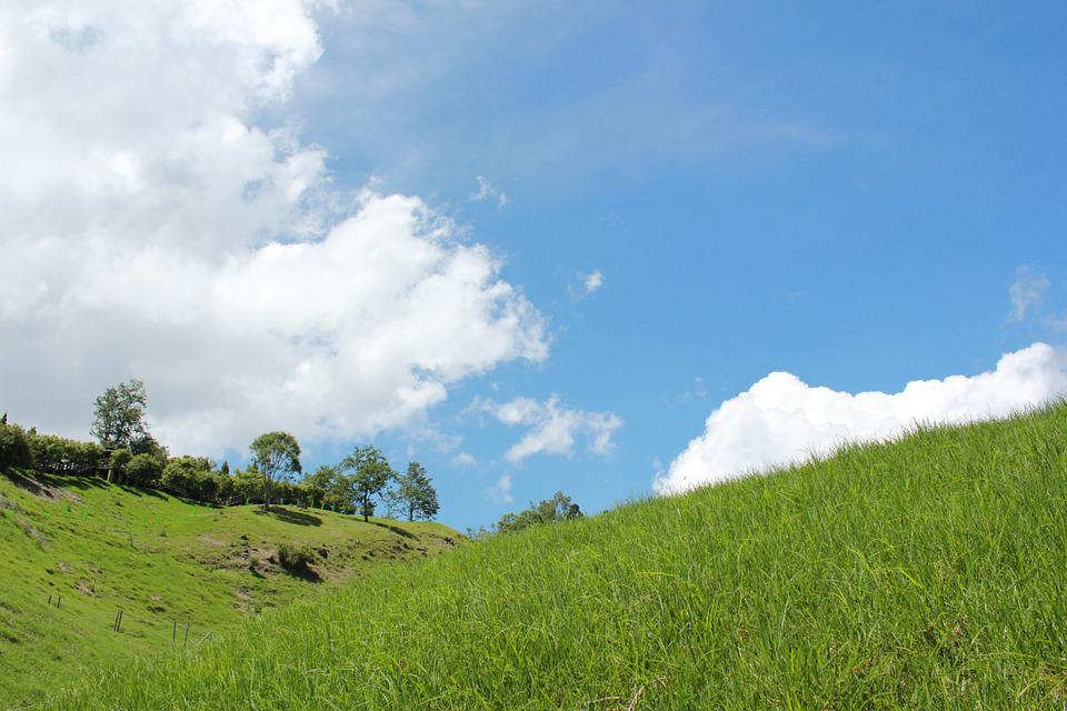 Blue Day, Prairie, Sky, Views, Green Grass