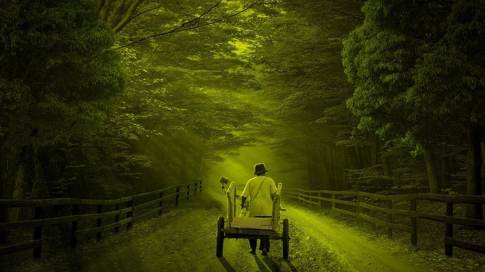 Farmer, Cart, Road, Village, Countryside, Rural