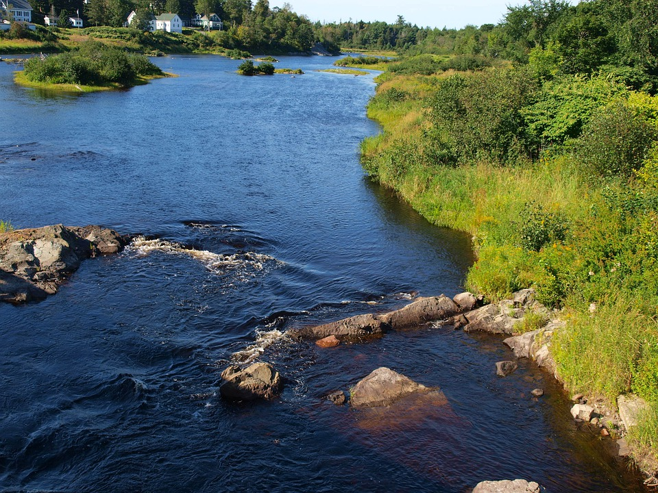 River, Machias, Summer, Maine, Village, Landscape