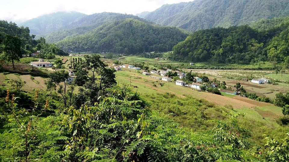 Nature, India, Jungle, Valley, Green, Sunny, Village