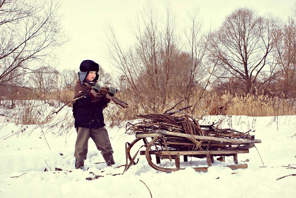 Winter, War, Difficult Time, Sani, Village, Firewood