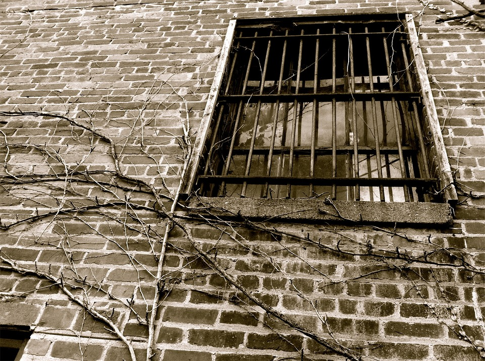 Window, Bars, Bricks, Wall, Vines