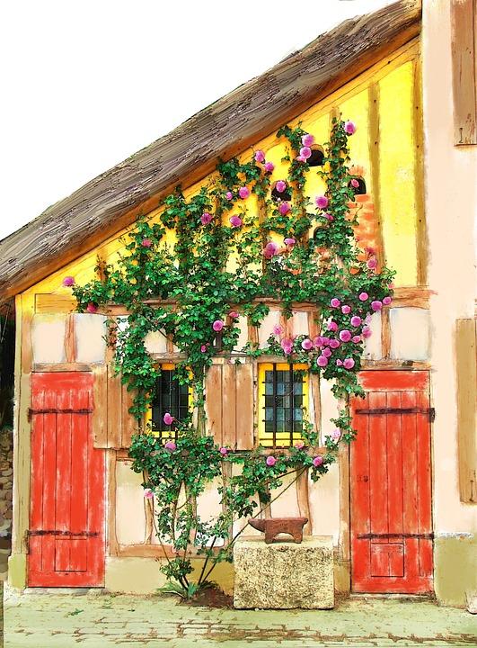 House, Vines, Roses, France