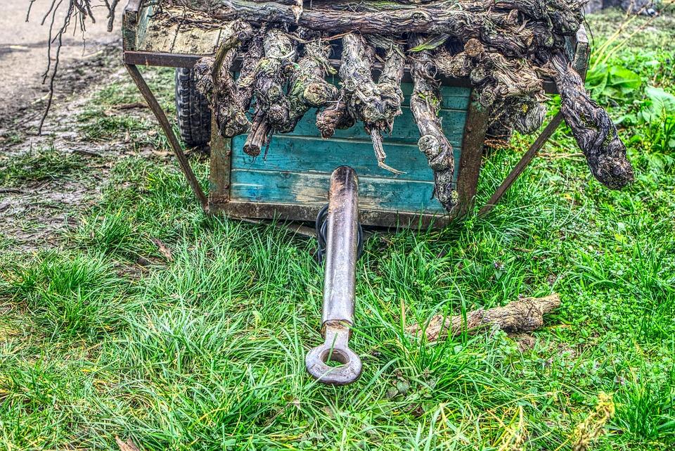 Trailers, Tractor, Agriculture, Wine, Vines, Rebknorzen