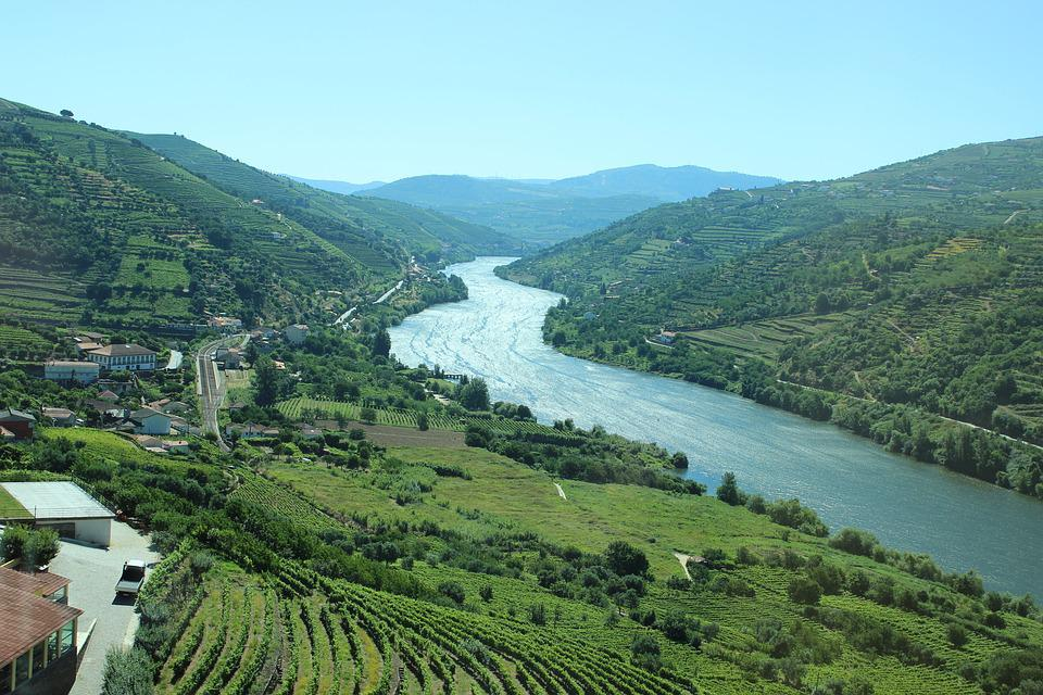 Douro, Overlook, Areas, Vineyard