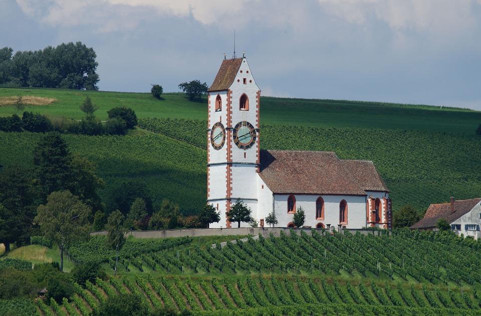 Church, Klettgau, Vines, Vineyard