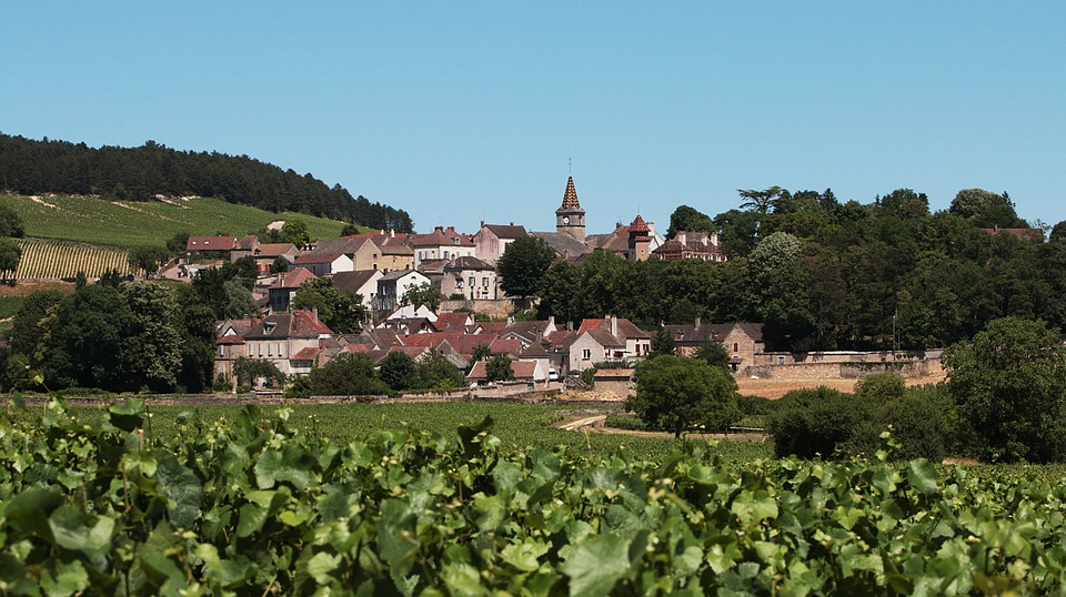 Village, Burgundy, Vines, Vineyard, France, Grapes