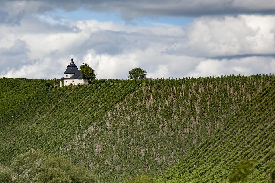 Mosel, Vineyards, Chapel, Landscape, Wine, Grapevine